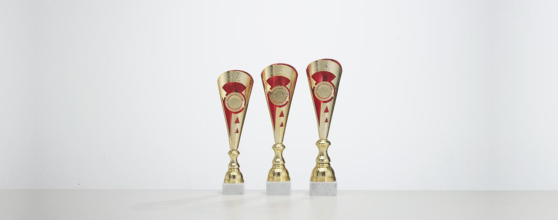 Pokal Fidschi