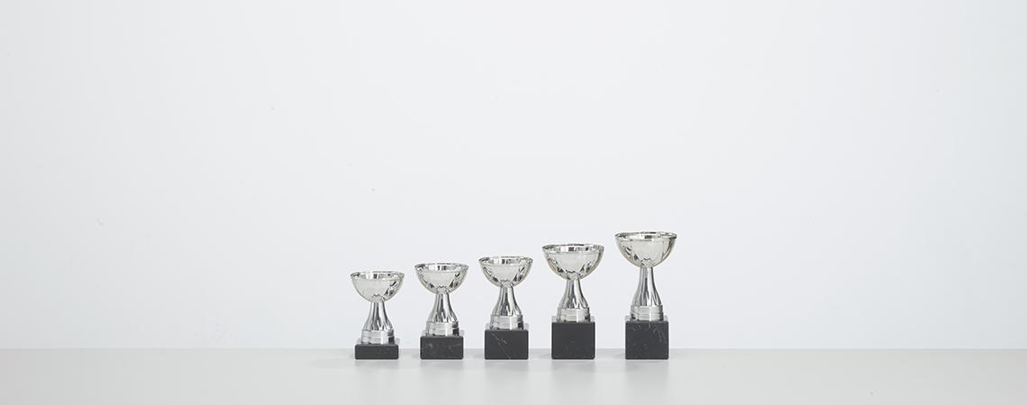Pokal Oslo - Silber