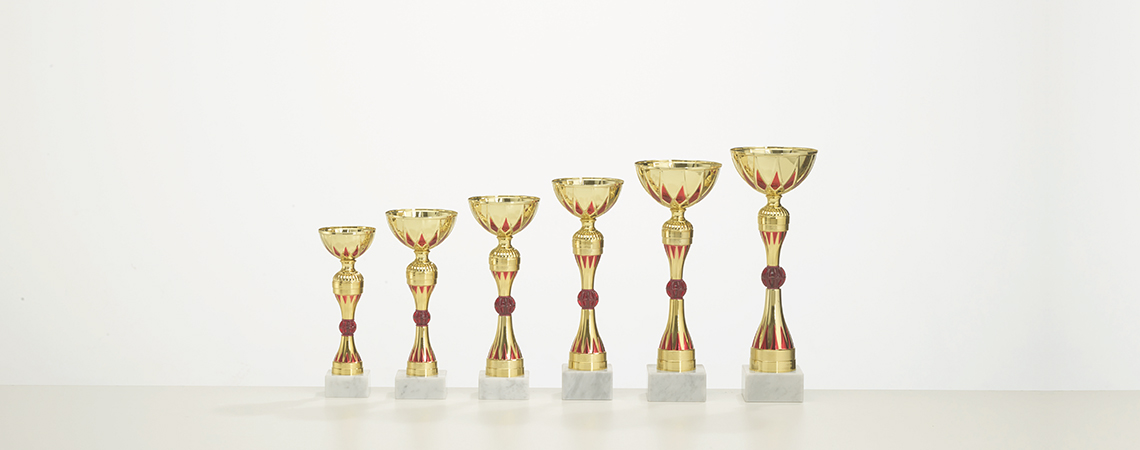 Pokal Rimini
