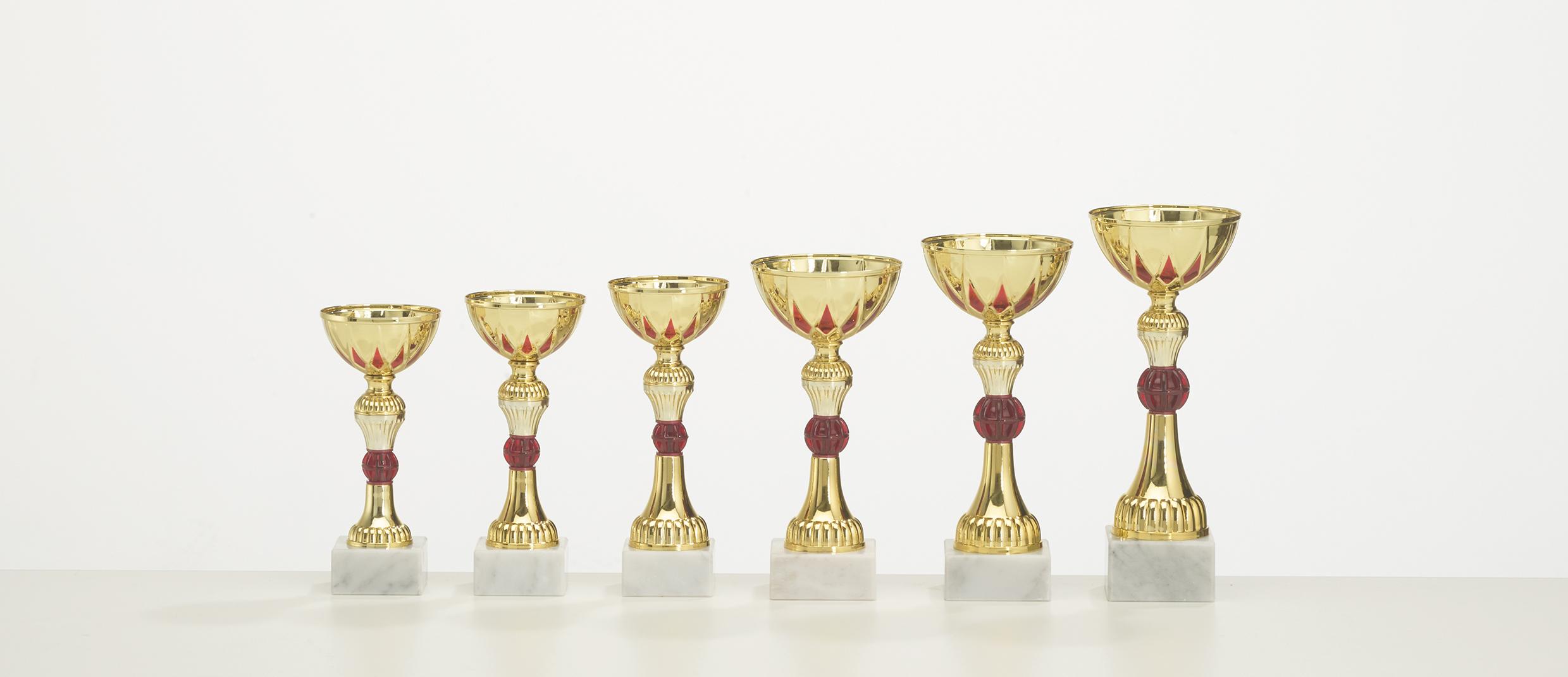 Pokal Rio