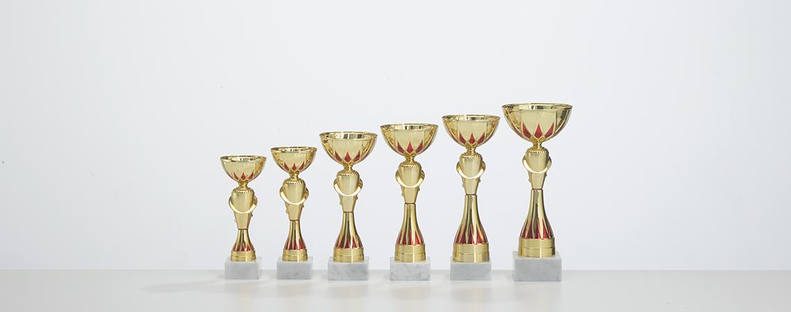 Pokal Sylt