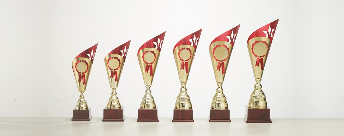 Pokal Verona