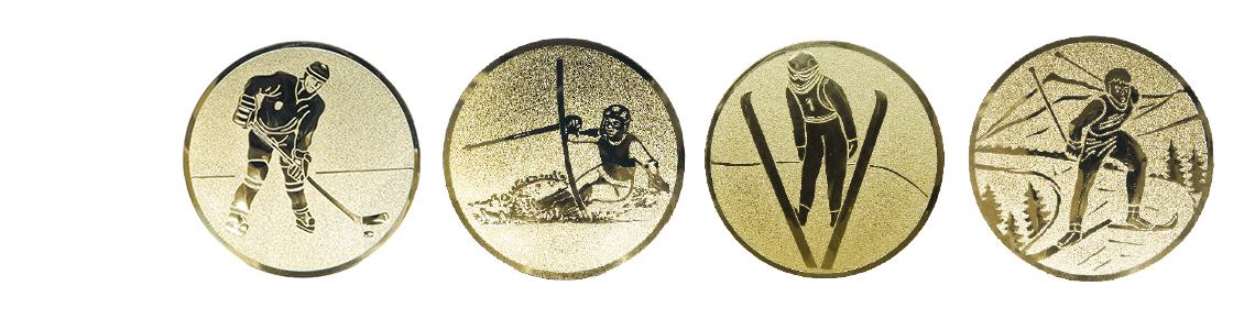 Auflagen Wintersport Ski